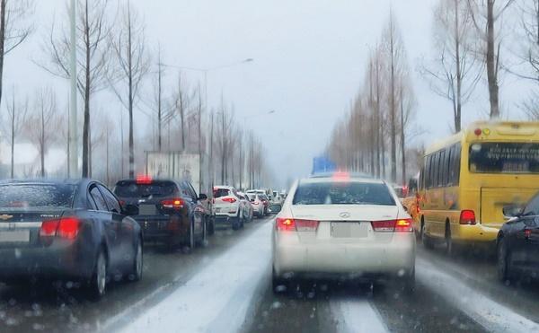 출근길 雪雪雪