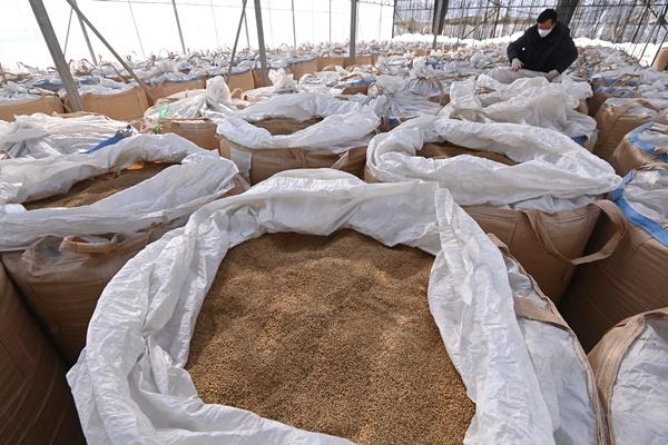 `쌀값 안정' 정부양곡 6만톤 공급